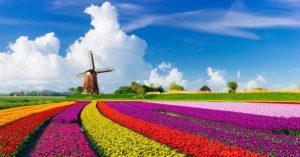 2018 Holanda BIT